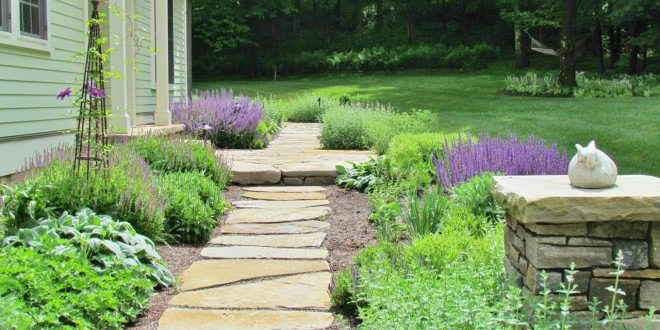 Mẫu thiết kế sân vườn - Ảnh 9