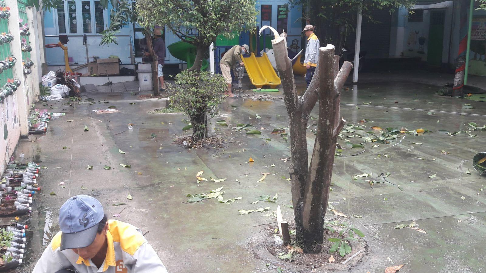 Thi công hồ bơi trường Mầm non Cầu Vồng - Ảnh công trường 4