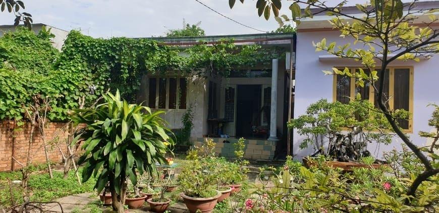 Khu vườn cũ trên nền nhà của gia đình anh Tâm