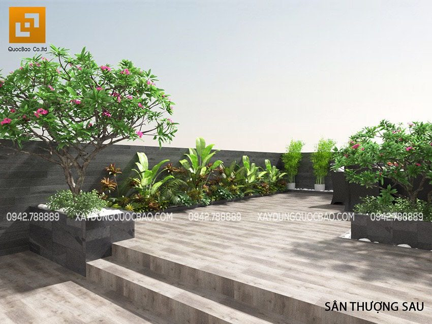 Cây hoa sứ được chọn trồng ở sân thượng vì mùi hương nhẹ nhàng dễ chịu